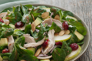 Mache and Turkey Salad with Cranberry Dressing