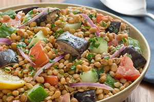 Roasted Eggplant and Lentil Salad with Tahini Dressing