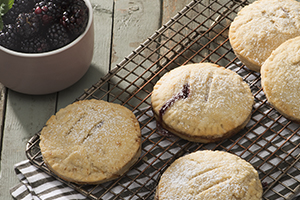 Balsamic Blackberry and Ricotta Hand Pies